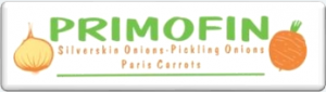 logo primofin website